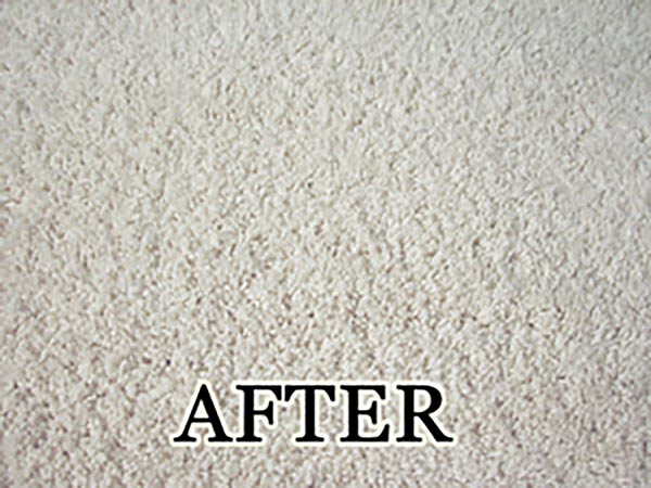 carpet ripple restretching repair after